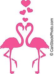 flamingos, liebe, zwei