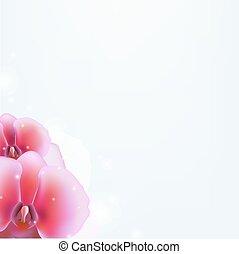 Floral Hintergrund mit Orchidee