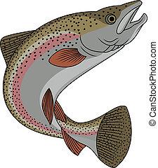 Forellenfisch