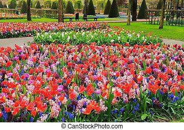 Formaler Frühlingsgarten.