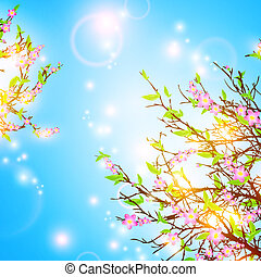 Frühlingsrollen