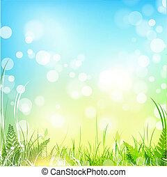 Frühlingswiese mit blauem Himmel
