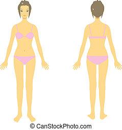 Frauenkörper, ganzer Körper