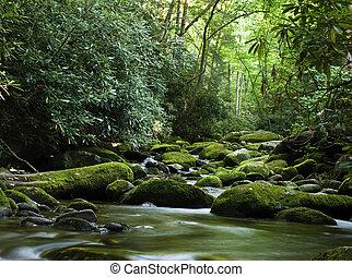 Friedlicher Fluss fließt über Felsen