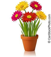 Frische Frühlingsfarbe, Blumenvektor