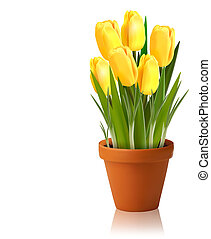 Frischer Frühlingsgelblicher Blumenvektor