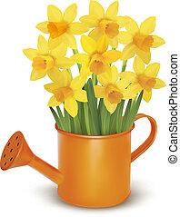 Gelbe, frische Frühlingsblumen
