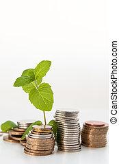 Geld mit Grünpflanzenanbau, Finanzkonzept.
