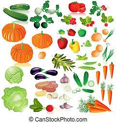 Gemüse isolierte Sammlung