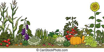 Gemüsegartenbett