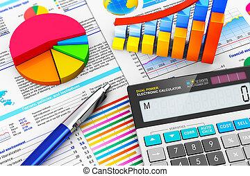 Geschäfts-, Finanz- und Rechnungslegungskonzept.