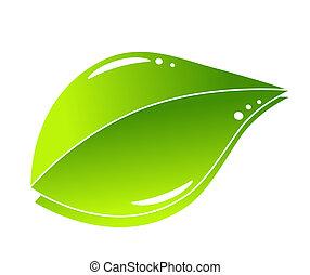 grün, begriff, blatt, natur
