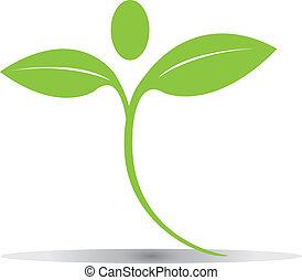 Grün hinterlässt Logovektor Eps10