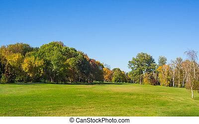 Grüne Naturlandschaft mit großem Rasen. Herbstpark.