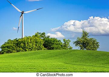 Grüne Umgebung.