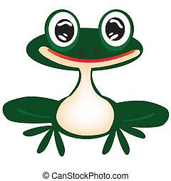 Grüner Frosch auf weiß