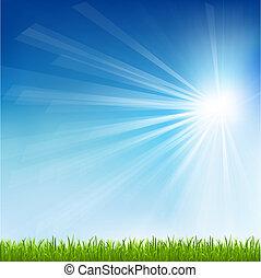 Grüner Gras- und Sonnenstrahl