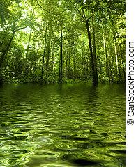 Grüner Wald.