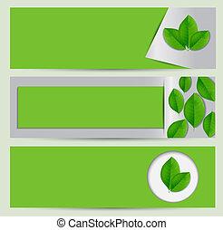 Grünes Öko-Banner mit Blättern