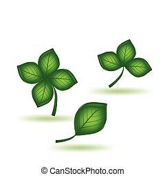 Grünes Blatt. Vector