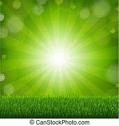 Grünes Gras mit sonnigem Hintergrund.