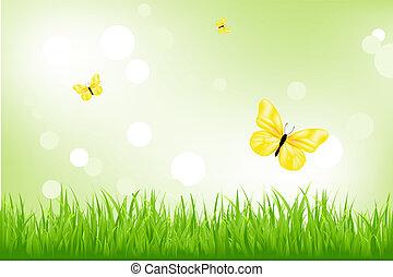 Grünes Gras und gelbe Schmetterlinge