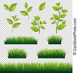 Grünes Gras und großes Set.