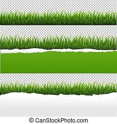 Grünes Gras und riss Papier transparenten Hintergrund.