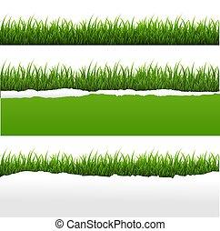 Grünes Gras und zerrissenes Papier weißes Hintergrundset.