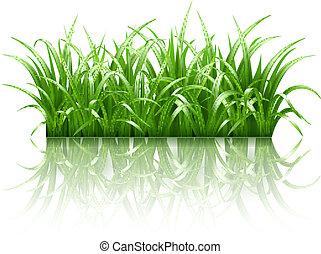 Grünes Gras, Vektor