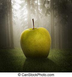 Großer Apfel im Wald