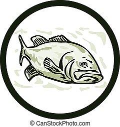 Großmaulbarsch-Fisch-Vorderseite Kreis-Cartoon.