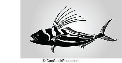 Hahnenfisch.