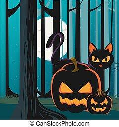 halloween, kürbise, szene, nacht, katz, wald, schwarz