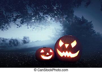 Halloween Kürbisse im Herbstwald.
