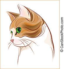 Hand gemaltes Porträt von Ingwer-Tragby-Katze