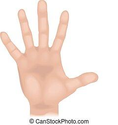 Hand illustriert