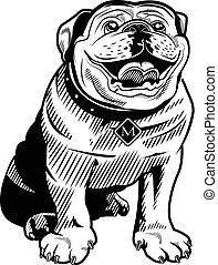 haussespekulanthund