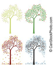 Herbst, Winter, Frühling, Sommerbaum.