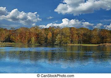 Herbstbäume, die im See reflektieren.