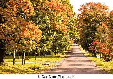 Herbsttag auf der Landstraße