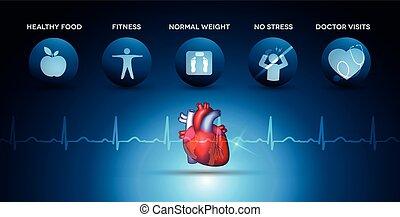 herz, kardiologie, heiligenbilder, koerperbau, gesundheitspflege