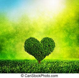 Herzförmiger Baum wächst auf grünem Gras. Liebe, Natur, Umwelt