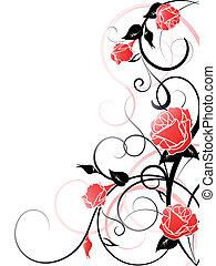hintergrund, vektor, rose