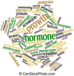hormon, wachstum