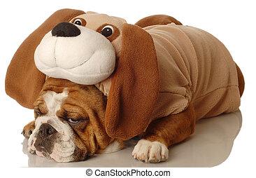 Hund verkleidet als Hund