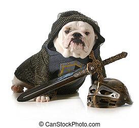 Hund verkleidet als Ritter