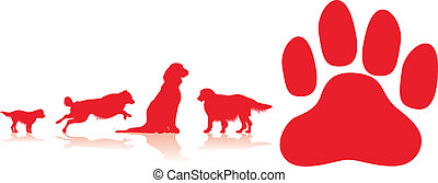 Hundepfote.