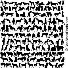 Hunderte von Hunden