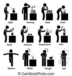 Ikonen der menschlichen Sinne
